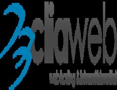 CliaWeb – Web Hosting, Alan Adı ve Sunucu Hizmetleri